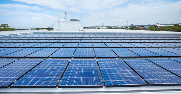Rooftop solar array installed by Sydney Markets is largest private one in Southern Hemisphere