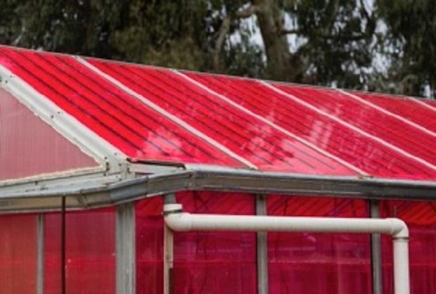 solar powered greenhouses