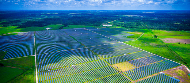 South Australians calling for more SA solar farms.