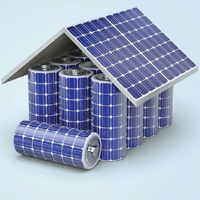 Solar home battery trial a success