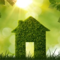 Renters choose renewables