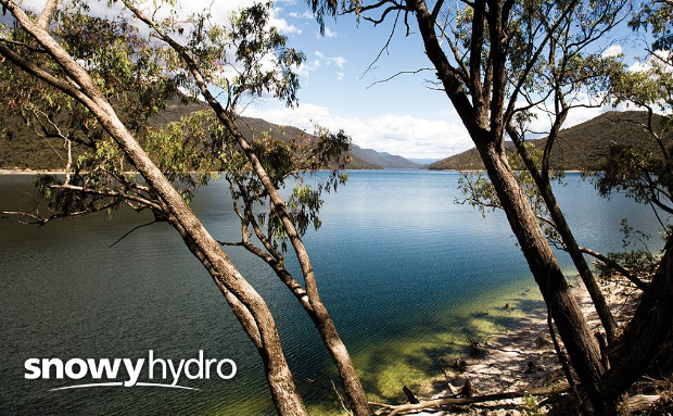 Snowy Hydro backs wind and solar to reduce energy prices.